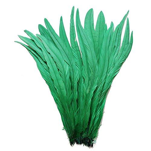 ERGEOB Natur Dekoration Hahn Schweif Feder schwarz weiß braun 30-35cm/ 12-14 Zoll länge, Ideal für Kostüme, Hüte, basteln, Zuhause Dekor, DIY grün 20 stück