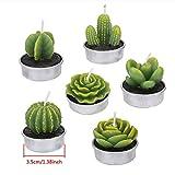 ZeWoo 12 Pcs Zart Kaktus-... Ansicht