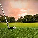 LI HAO SHOP Outdoor Kunstrasen gefälschte Rasen Dekoration Golfplatz Rasen hohe Dichte Rasen Garten Rasen 1m * 1m (nur für Golf Course)