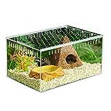 HangaroneBoîte Transparente d'élevage de Reptiles, boîte de Vivarium en Verre, boîte d'alimentation de Type Couvercle Coulissant en Acrylique.