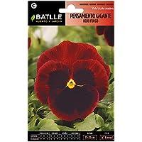 Semillas de Flores - Pensamiento Gigante rojo fuego - Batlle