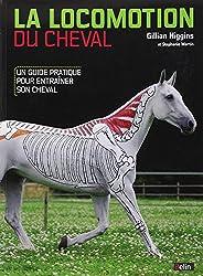 La locomotion du cheval : Un guide pratique pour entrainer son cheval