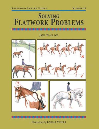 Solving Flatwork Problems (Threshold Picture Guide) por Jane Wallace