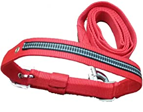 GENERIC Red PP Collar with Radium Reflectors and Matching Leash 1.0 - Medium