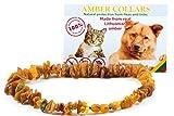 Bernsteinkette für Hunde und Katzen aus Roh Baltischer Bernstein / Elegance Zeckenhalsband / Flohband / Bernstein Gegen Zecken / Zecken und Flohschutz Halsband / Zeckenschutz Hund / Ungezieferhalsband (20 cm.)
