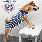 Dog Surgical Recovery Suit Bauchwundenschutz, After Surgery Wear, E-Collar Alternative für Hunde, Heimtierbekleidung (M, Blaue und weiße Streifen)
