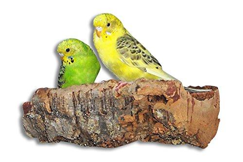 Korksitzbrett M, Tolles Vogelzubehör für Wellensittich, Nymphensittich, Papagei | Vogelspielzeug und Vogelspielplatz für Vogelvoliere bzw Wellensittich Käfig | Sitzbrett für Vögel | Spielzeug