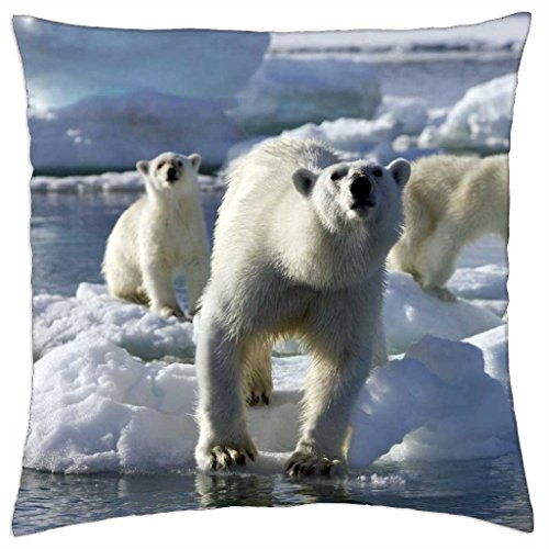 King Of The Road, for Tony {Nannouk} - Throw Pillow Cover Case (18\