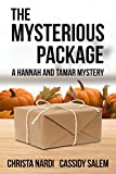 Book cover image for The Mysterious Package (A Hannah and Tamar Mystery Book 1)
