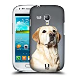Head Case Designs Blonder Labrador Retriever Hund Hunderassen Snap-on Schutzhülle Back Case für Samsung Galaxy S3 III mini I8190