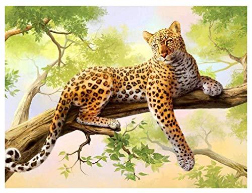 - Leopard Kit Mit Herz