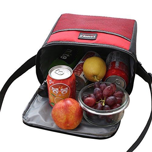 Yvonnelee Borsa frigo da 5 litri, adatta per lavoro, scuola, pic-nic, biciclettate e qualsiasi altra occasione Rot grigio