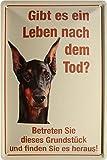 Warnschild Hier wache ich - Dobermann Hund Funny Blechschild 20x30 cm Blech 211