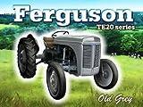 PLAQUE METAL 40X30cm TRACTEUR MASSEY FERGUSON TE20 d'occasion  Livré partout en Belgique