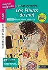 Les Fleurs du Mal - BAC 2020 - Parcours associés - Alchimie poétique : la boue et l'or - Carrés Classiques Oeuvres Intégrales par Baudelaire