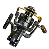 Bass Fishing Reels Review and Comparison