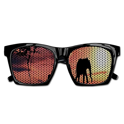 EELKKO Mesh Sunglasses Sports Polarized, Elephant Silhouettes by River Africa Animals Adventure Landscape,Fun Props Party Favors Gift Unisex
