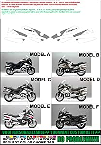 Kit adesivi decal stickers bmw r1200 rt special edition 2010 (ability to customize the colors)