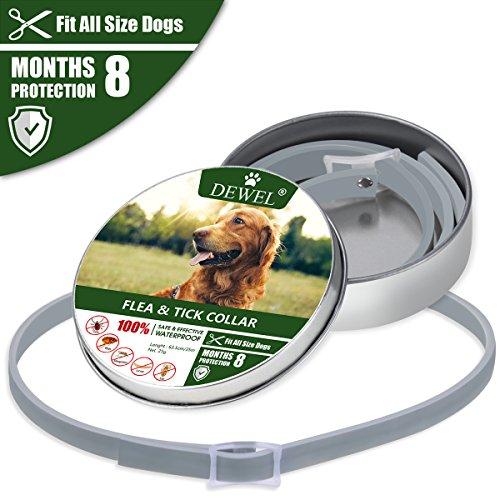 Cane collare antipulci pulci e zecche collare per cani regolabile impermeabile proteggere per gatti