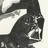 Lienzo impreso con «dibujo de Darth Vader» de Star Wars, de algodón, multicolor, 1,80x 30x 30cm