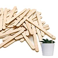 100 Lollipop Sticks Wooden Plant Markers for Labelling Seeds, Herbs, Flowers and Plants, Wooden Lollipop Sticks (15cm x 2cm)