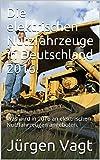 Die elektrischen Nutzfahrzeuge in Deutschland 2016!: Was wird in 2016 an elektrischen Nutzfahrzeugen angeboten.