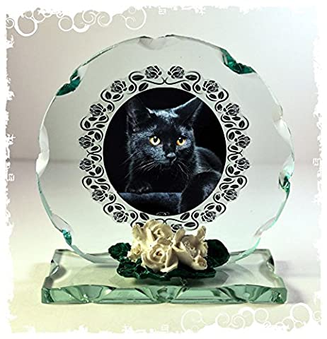 Black Cat Pet Photo Cut Glass Round Frame Plaque Special Occasion Limited Edition