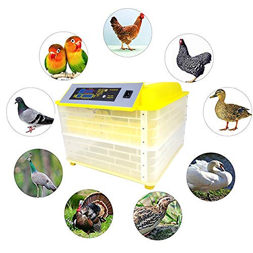 Garten Haushaltsgeräte (CX AMZ Vollautomatische kleine Haushaltsgeräte-Brutmaschine,geeignet für die Vorschulerziehung,Familienhaustier,Brutkasten,Eggs original Ecology Incubator,112Eggs,NODualpower)