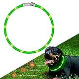 collare di cane a LED lampeggiante con USB ricaricabile e misura Small Medium Large da 27.5 pollici / 70 CM (verde)