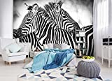 FORWALL Fototapete Tapete Zebra Weiss-Schwarz P4 (254cm. x 184cm.) Photo Wallpaper Mural AMF10159P4 Gratis Wandaufkleber Natur Wild Wilde Tier Tiere Afrika Zebr Zebras