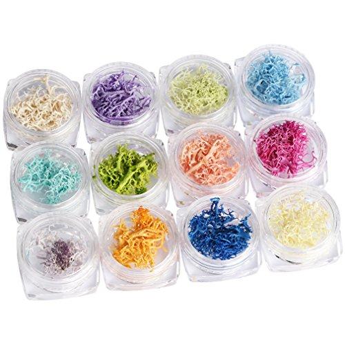 JasCherry 12 Box Koralle Nagel Glitter Paillettes Flitter Glitzer pailletten Nail Art Set Kit fur Nagel Dekoration