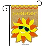 Best Briarwood Lane Garden Decors - Briarwood Lane Summer Sunface Burlap Garden Flag Seasonal Review