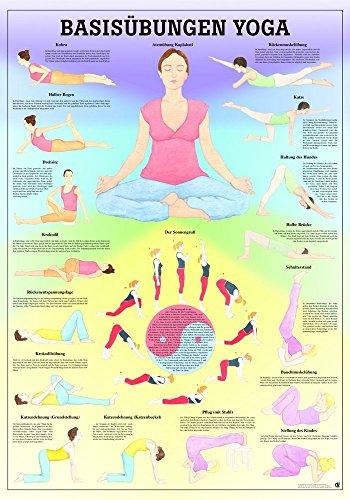 Ruediger Anatomie TA76 Basisübungen Yoga Tafel, 70 cm x 100 cm, Papier