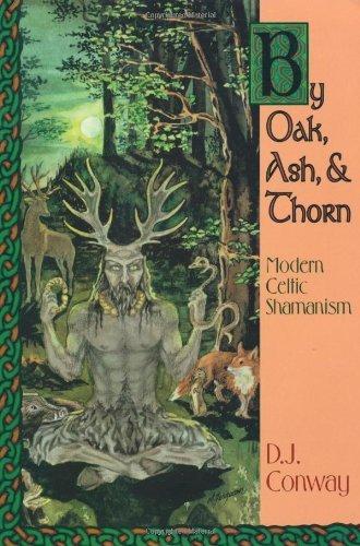 By Oak, Ash, & Thorn: Modern Celtic Shamanism (Llewellyn's Celtic Wisdom) (English Edition)