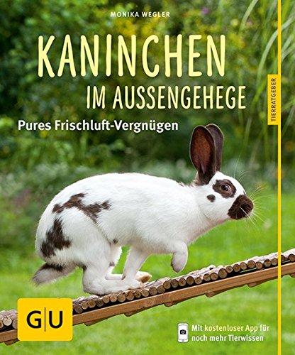 Kaninchen im Außengehege: Pures Frischluft-Vergnügen