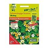 Kölle's Beste Blumensamen Schwarzäugige Susanne Mischung (Thunbergia)