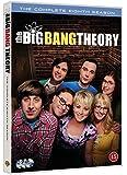 Big Bang Theory Saison 8 (Import Langue Française Region 2)