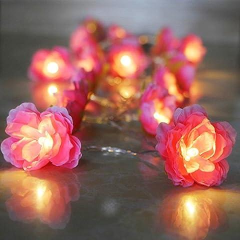 20-LED Guirlande Lumineuse Motif Fleur Rose Lamps Blanc Lumière
