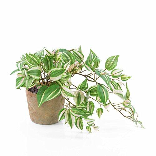 artplants Künstliche Tradescantia PACO im Terracotta Topf, grün-weiß, 50 cm - Kunst Zimmerpflanze/Deko Hängepflanze