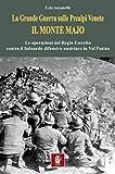La Grande Guerra sulle prealpi venete. Il monte Majo. Le operazioni del Regio Esercito contro il baluardo difensivo austriaco in Val Posina