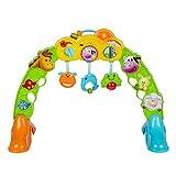 WinFun–Fitnesscenter für Babys mit Figuren von Tieren und Licht & Sound (COLORBABY 44530)