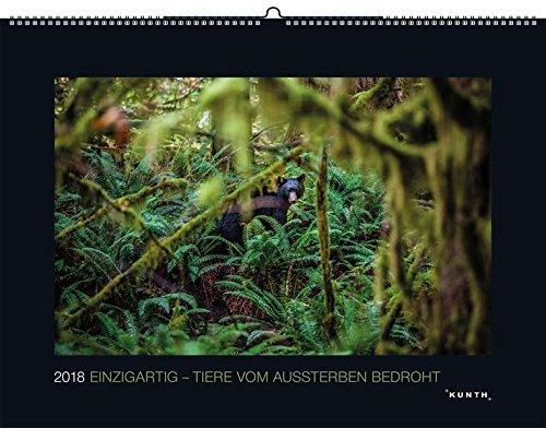 Einzigartig - Tiere vom Aussterben bedroht 2018: Kalender 2018 (KUNTH Wandkalender Black Edition)