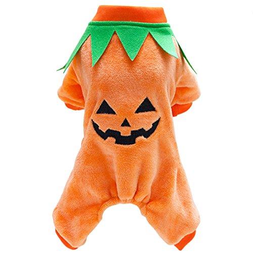 (Bai Sie Mei Pet Herbst Winter customes Kleidung, Halloween Weihnachten Kürbis Haustier Kleidung Hund Pullover Katze Kleidung)