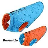 EULSV Hundebekleidung Wasserdichte Winter Hundemantel Jacke Reversible Kleidung Für Kleine Mittelgroße Hunde Chihuahua Mops Blue M