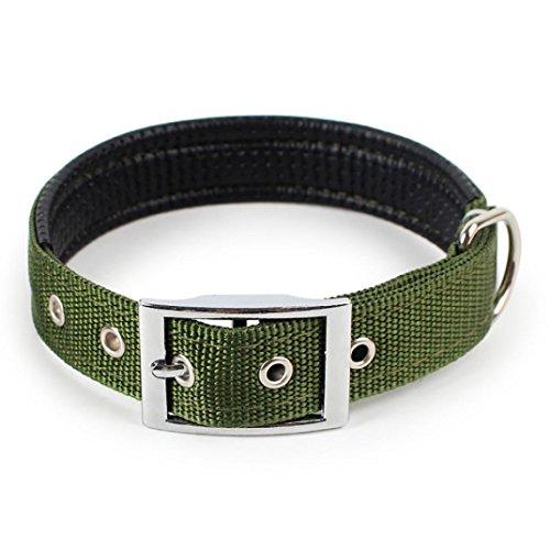 Winkey Süßer Hund Halsband verstellbar Riemen für große Medium Small Pet Hunde Pure Color