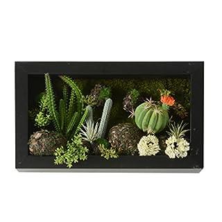 3D-Wandbehänge Künstliche Blumen Metope Hellgrünes Sukkulente Bearbeitung für Hauptdekorationen 7,87 * 13,78 Zoll