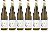 Tiefgang Qualitätswein Riesling Trocken aus der Pfalz (6 x 0.75 l)