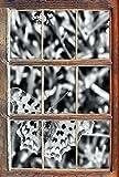 Stil.Zeit Monocrome, Beau Papillon sur la Prairie de FleursWindows en 3D Regarder, Taille Sticker Mural ou de Porte: 62x42cm, Stickers muraux, Sticker Mural, décoration Murale