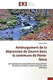 Aménagement de la dépression de zounvi dans la commune de porto-novo