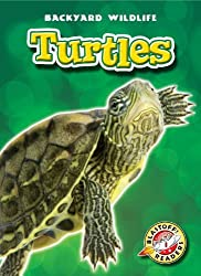 Turtles (Blastoff! Readers: Backyard Wildlife) (Blastoff! Readers: Backyard Wildlife: Level 1 (Library)) by Emily Green (2010-08-08)